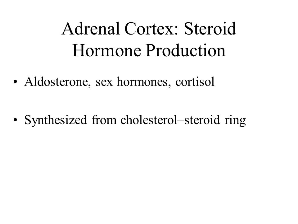 Adrenal Cortex: Steroid Hormone Production