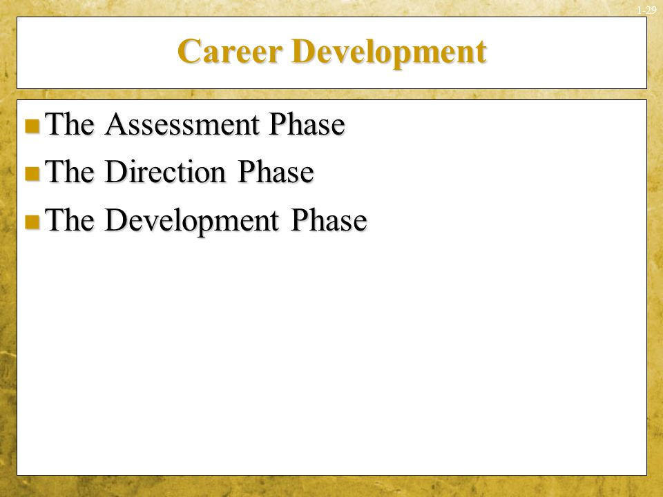 Career Development The Assessment Phase The Direction Phase