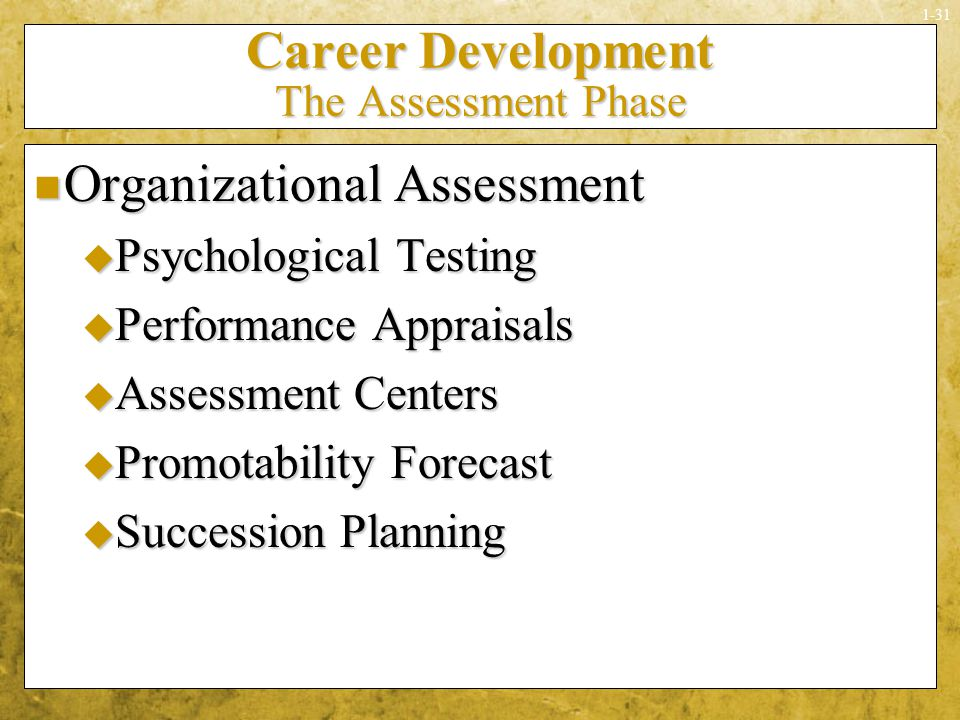 Career Development The Assessment Phase