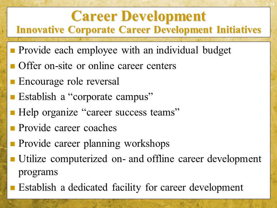Career Development Innovative Corporate Career Development Initiatives