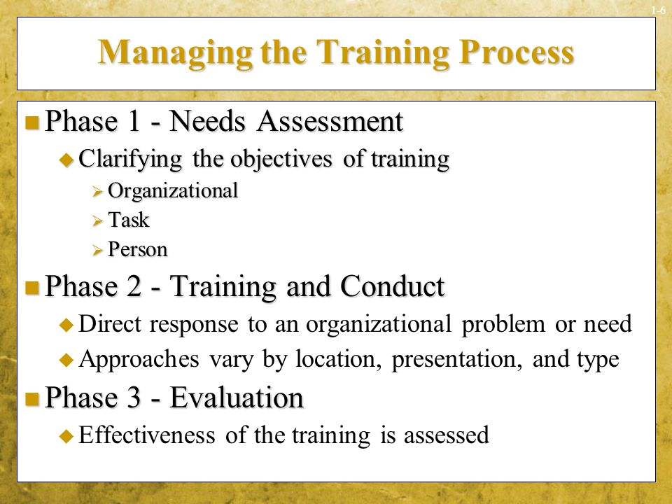 Managing the Training Process