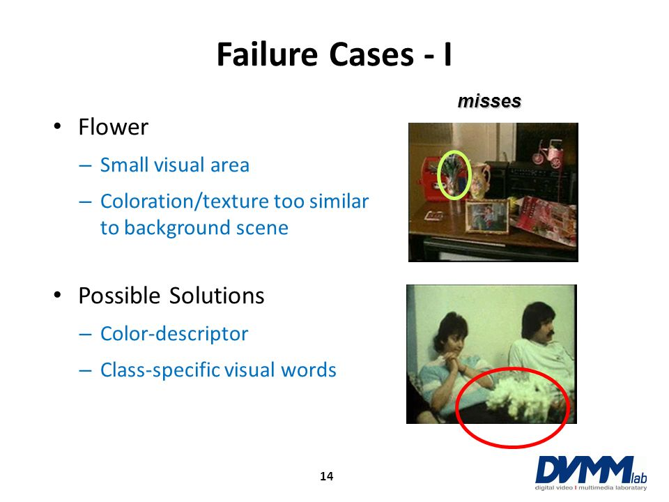 Failure Cases - I Flower Possible Solutions Small visual area
