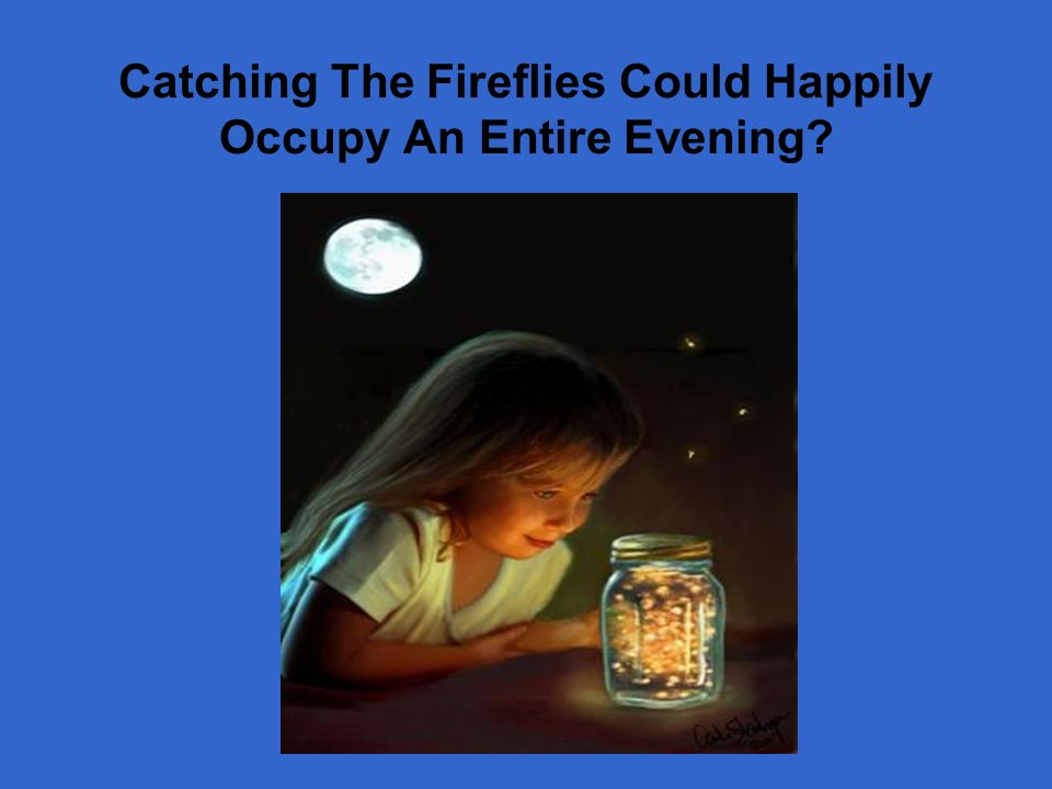 Catching The Fireflies Could Happily Occupy An Entire Evening