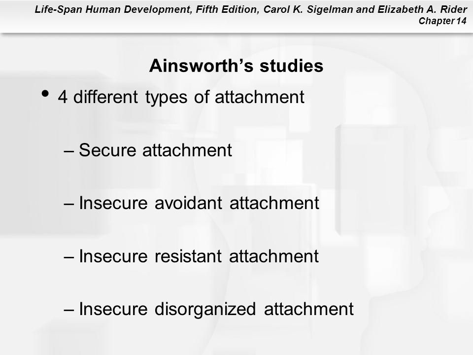 Ainsworth's studies 4 different types of attachment. Secure attachment. Insecure avoidant attachment.