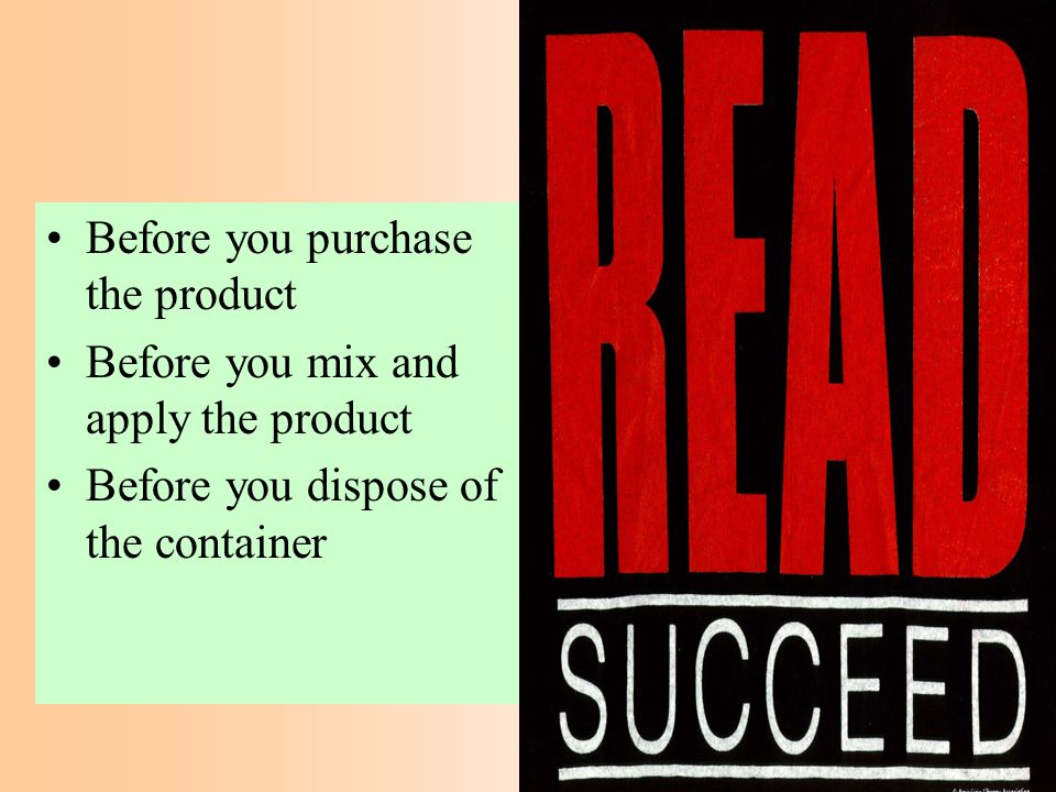 Before you purchase the product