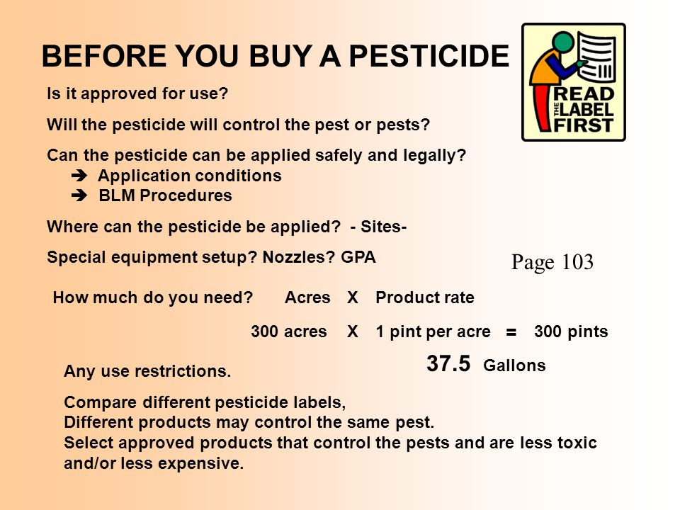 BEFORE YOU BUY A PESTICIDE