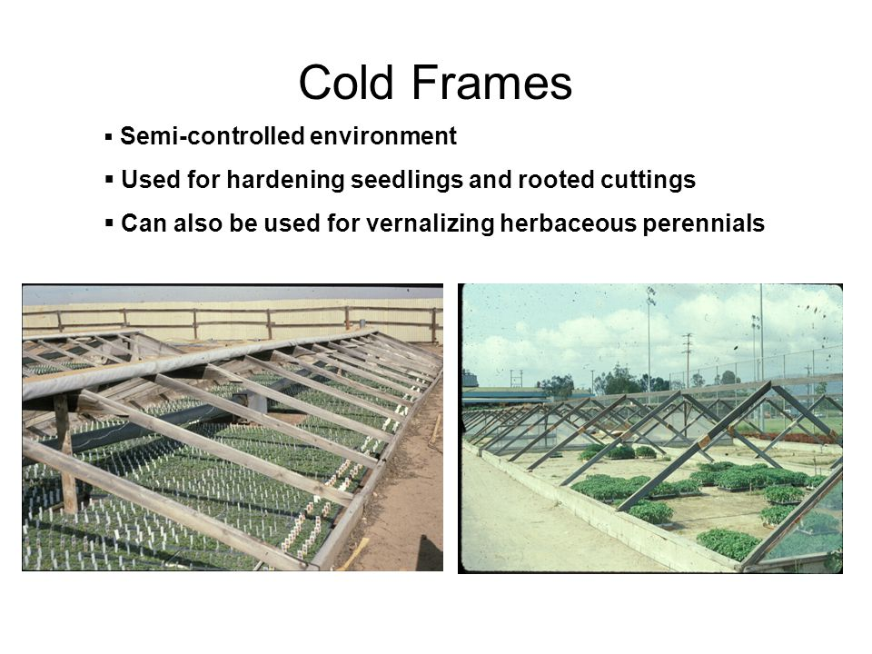 Plant Propagation Facility - ppt video online download