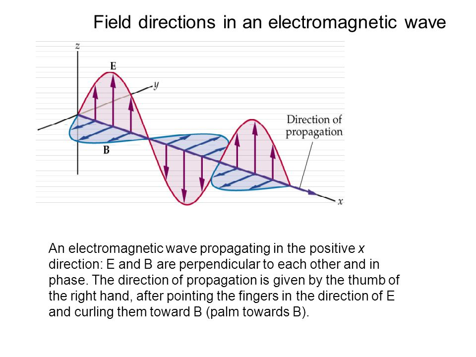 Field directions in an electromagnetic wave