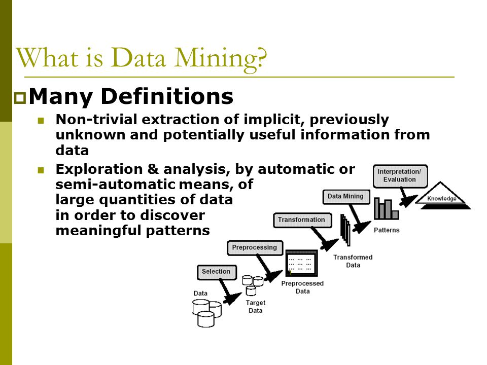 What is Data Mining Many Definitions