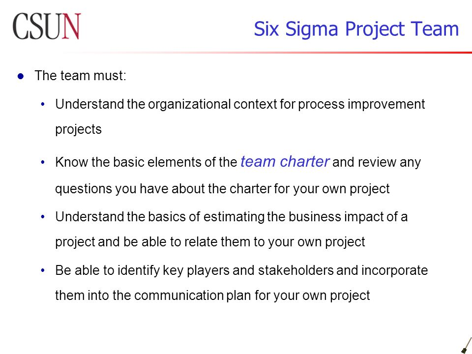 Six Sigma Project Team The Must