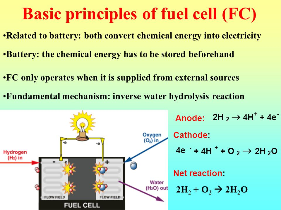 Biomass Fuel Cells Sergey Kalyuzhnyi - ppt video online download