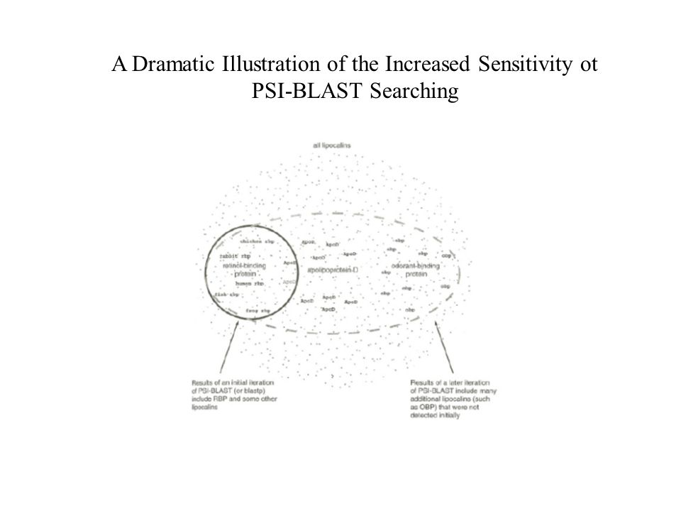A Dramatic Illustration of the Increased Sensitivity ot PSI-BLAST Searching