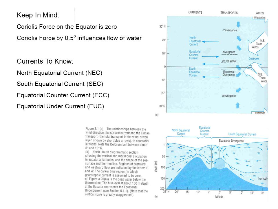 Keep In Mind: Currents To Know: Coriolis Force on the Equator is zero