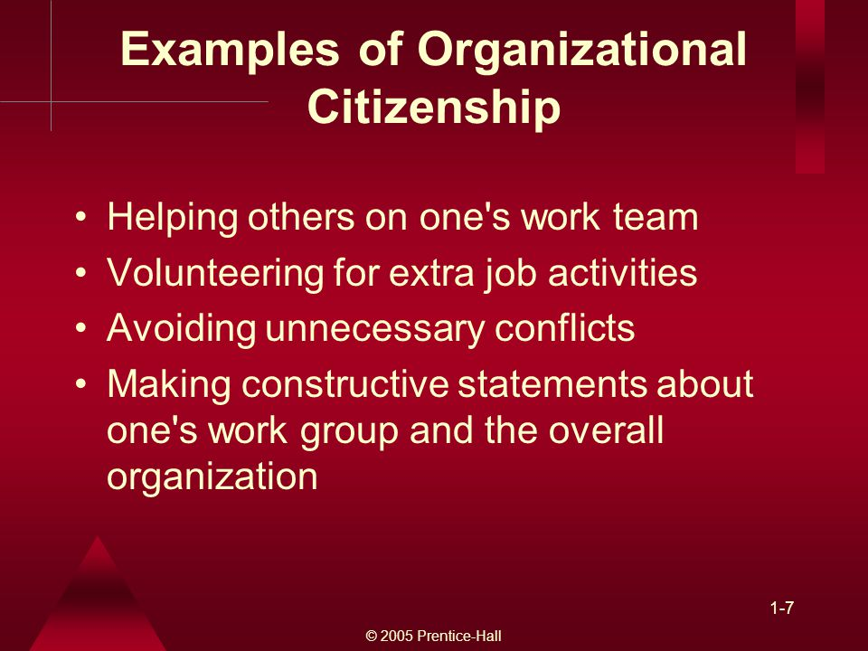 Examples of Organizational Citizenship