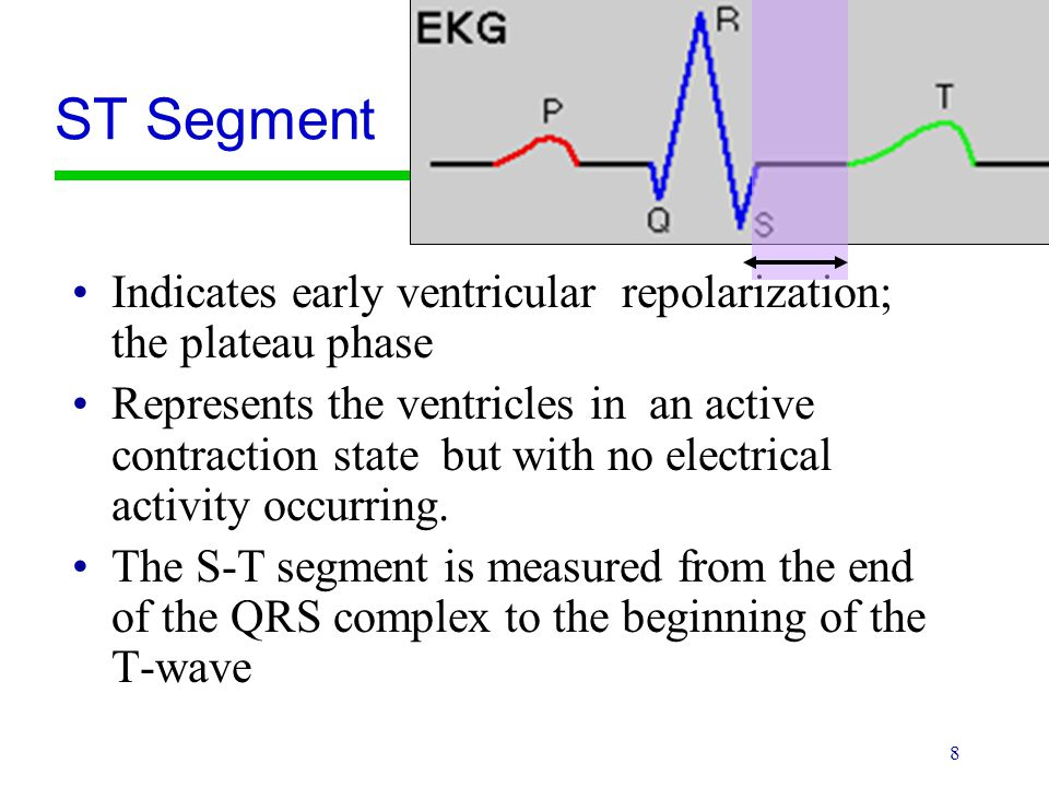 ST Segment Indicates early ventricular repolarization; the plateau phase.