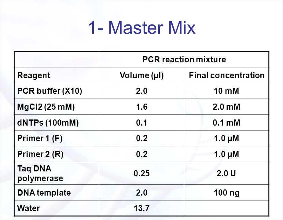 The polymerase chain reaction pcr ppt video online for Pcr template amount