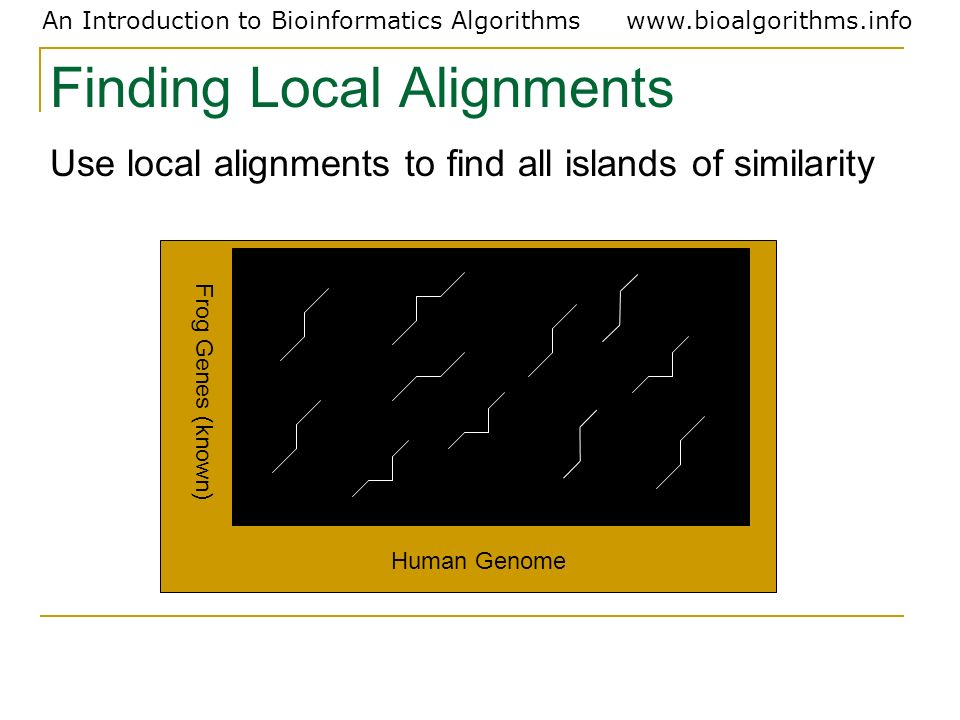 Finding Local Alignments