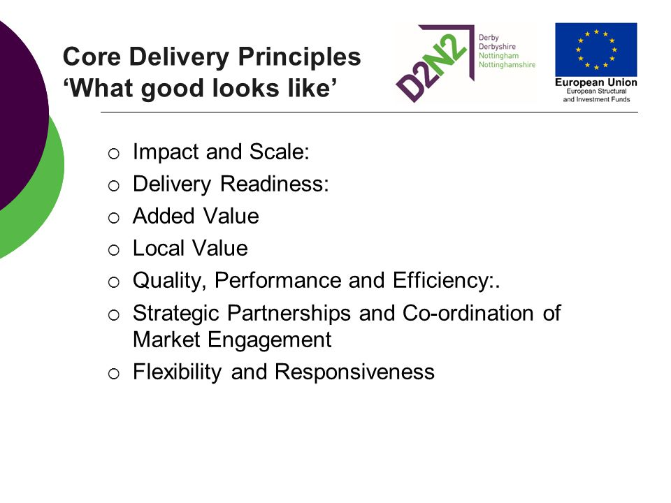 Core Delivery Principles 'What good looks like'