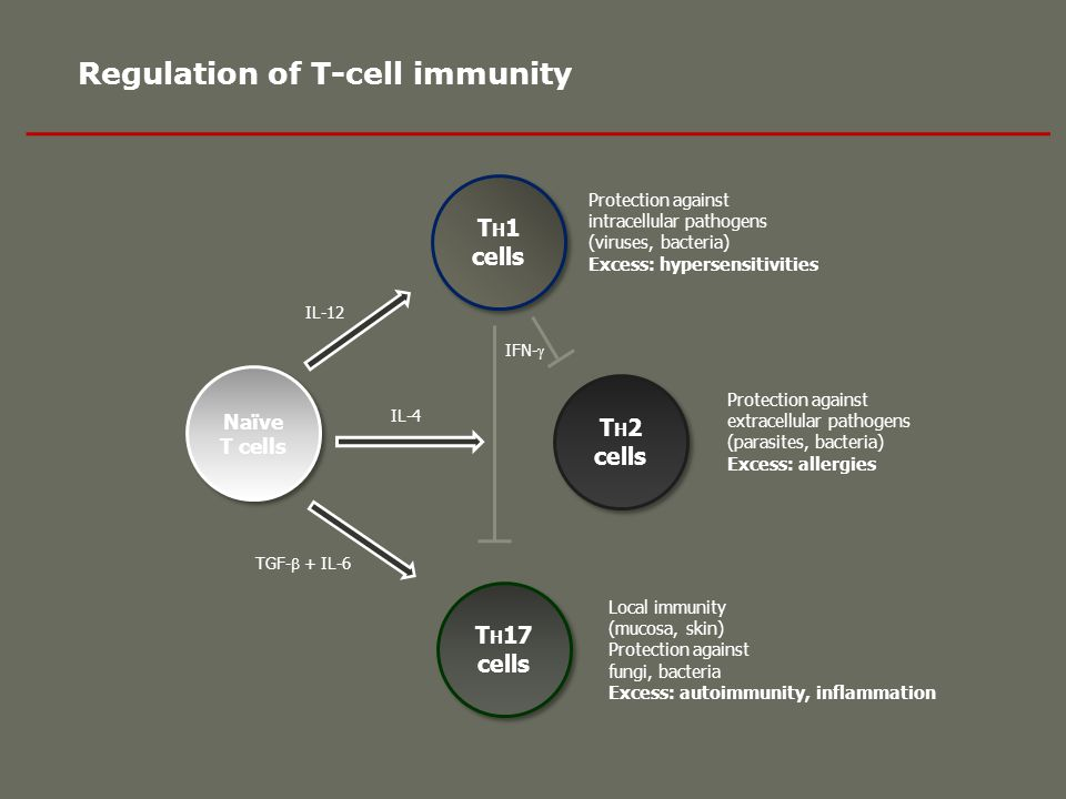 Regulation of T-cell immunity