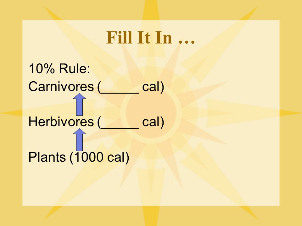 Fill It In … 10% Rule: Carnivores (_____ cal) Herbivores (_____ cal)