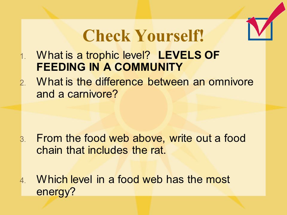 Check Yourself! What is a trophic level LEVELS OF FEEDING IN A COMMUNITY. What is the difference between an omnivore and a carnivore
