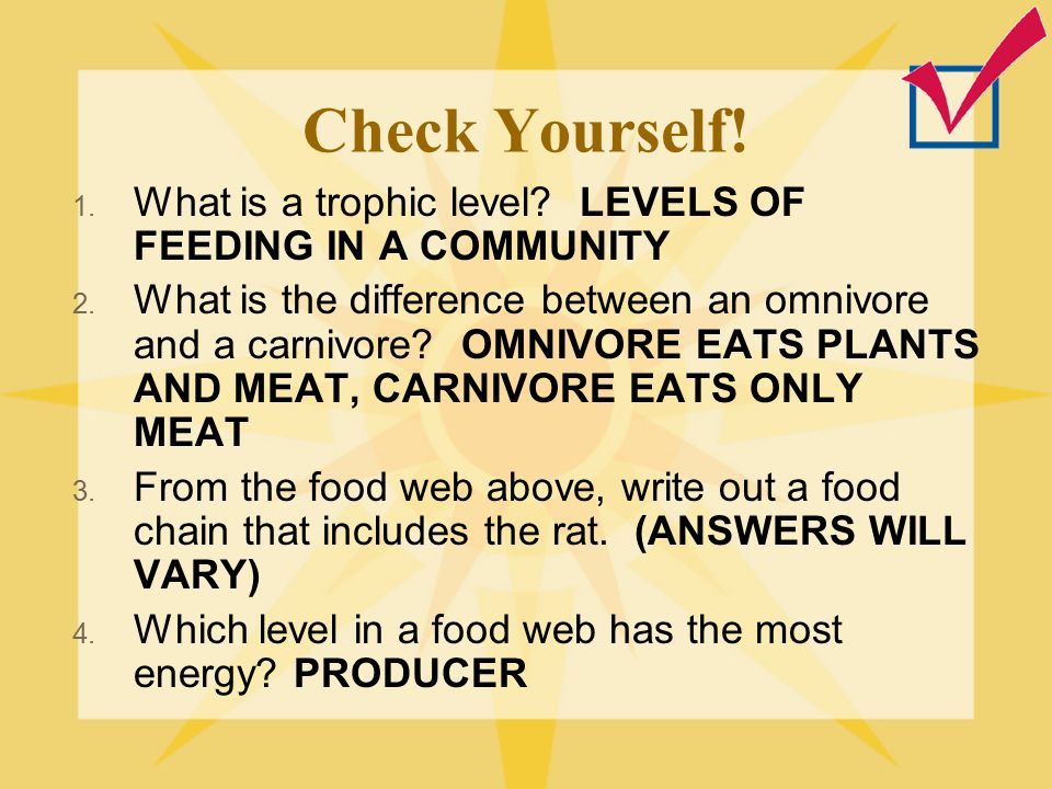 Check Yourself! What is a trophic level LEVELS OF FEEDING IN A COMMUNITY.