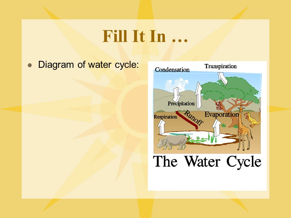 Fill It In … Diagram of water cycle: