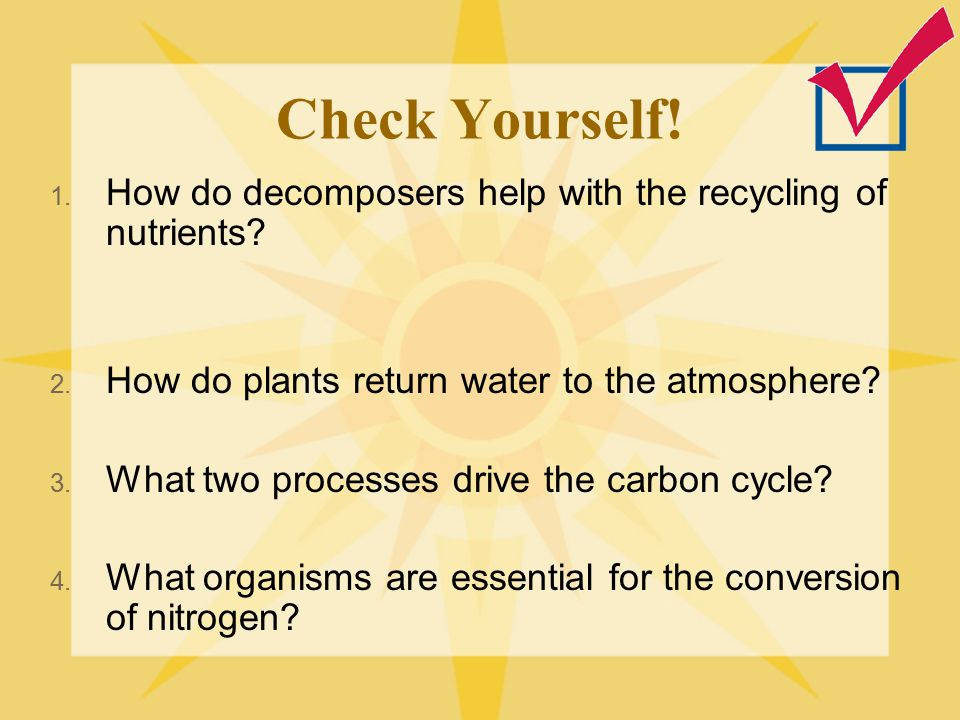 Check Yourself! How do decomposers help with the recycling of nutrients How do plants return water to the atmosphere