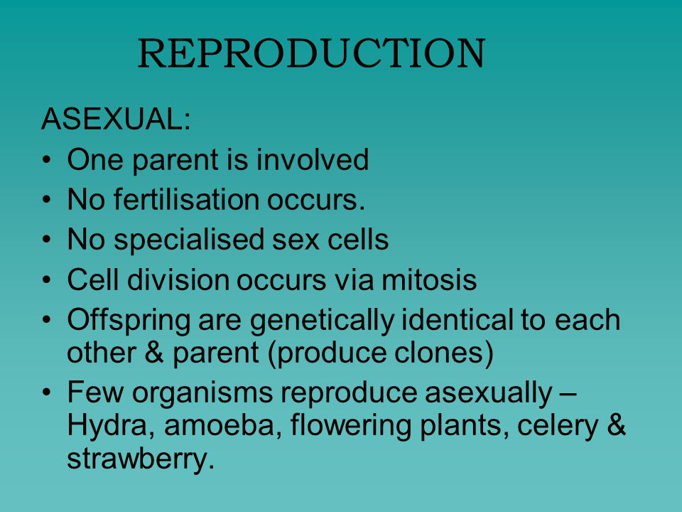 Asexual reproduction budding advantages of breastfeeding