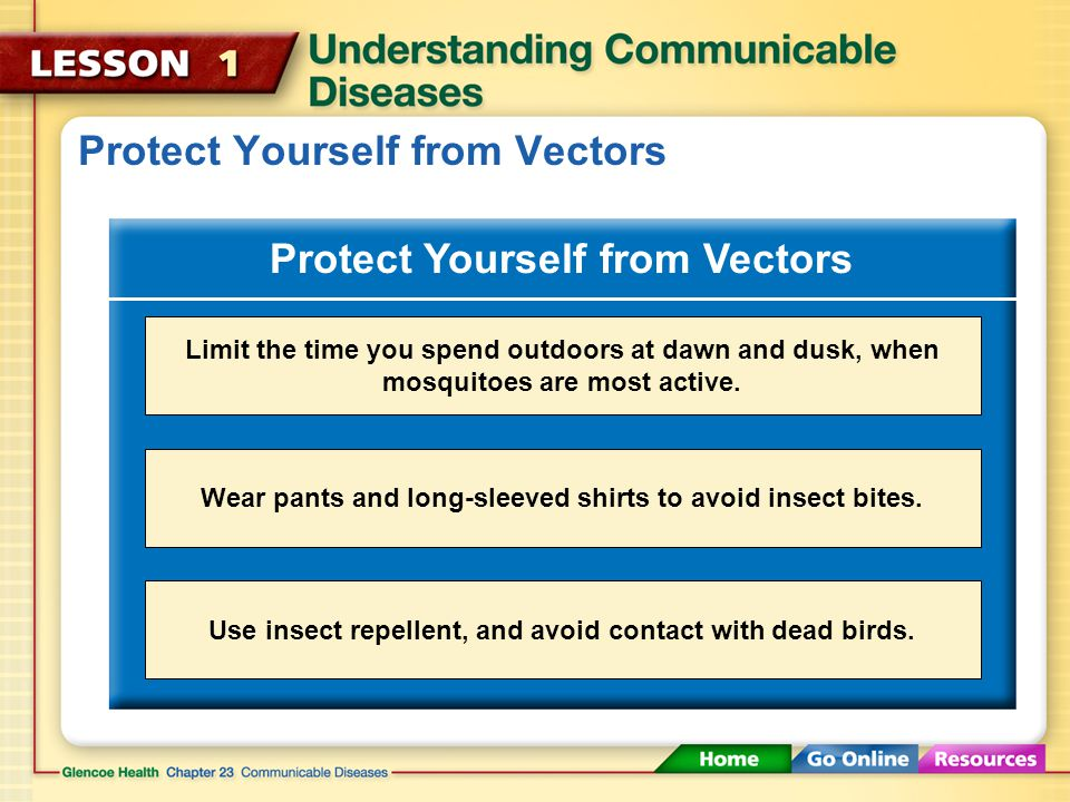 Protect Yourself from Vectors