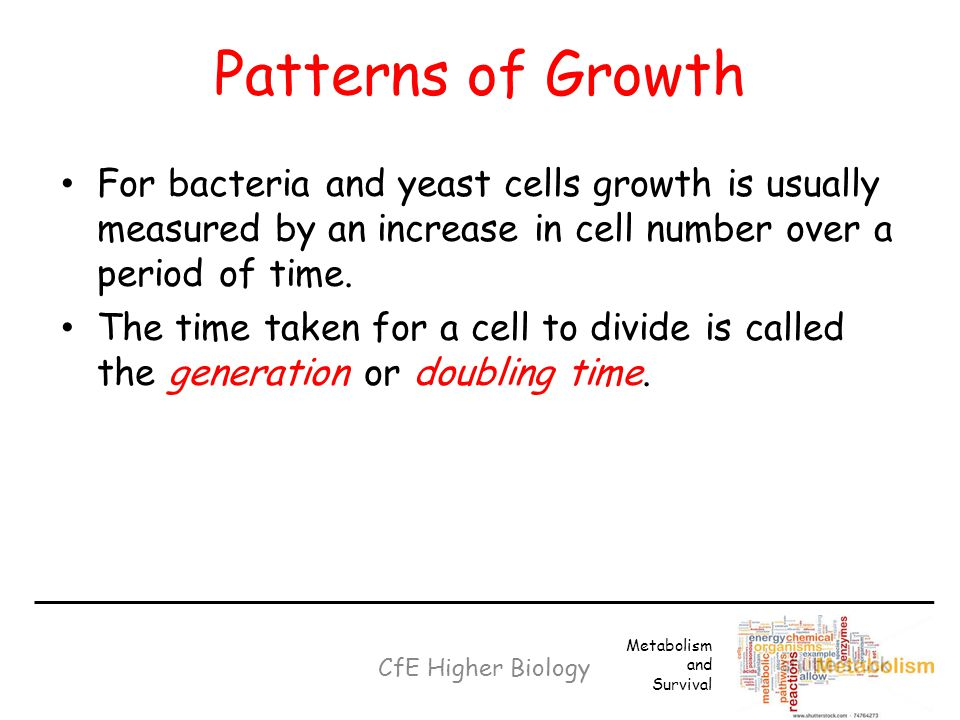 Patterns of Growth For bacteria and yeast cells growth is usually measured by an increase in cell number over a period of time.