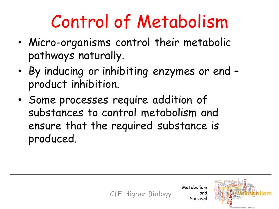 Control of Metabolism Micro-organisms control their metabolic pathways naturally. By inducing or inhibiting enzymes or end –product inhibition.