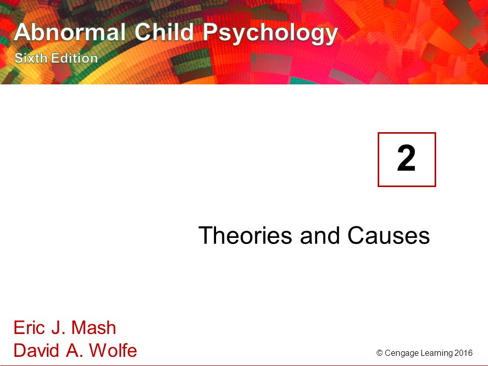 2 Theories and Causes