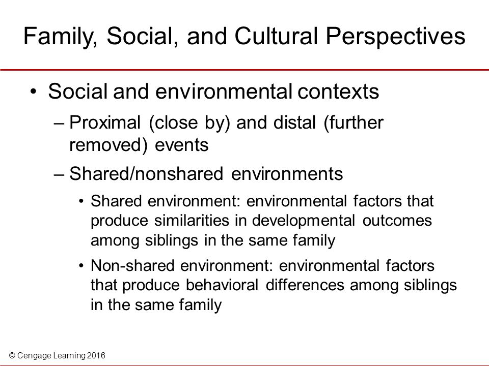 Family, Social, and Cultural Perspectives