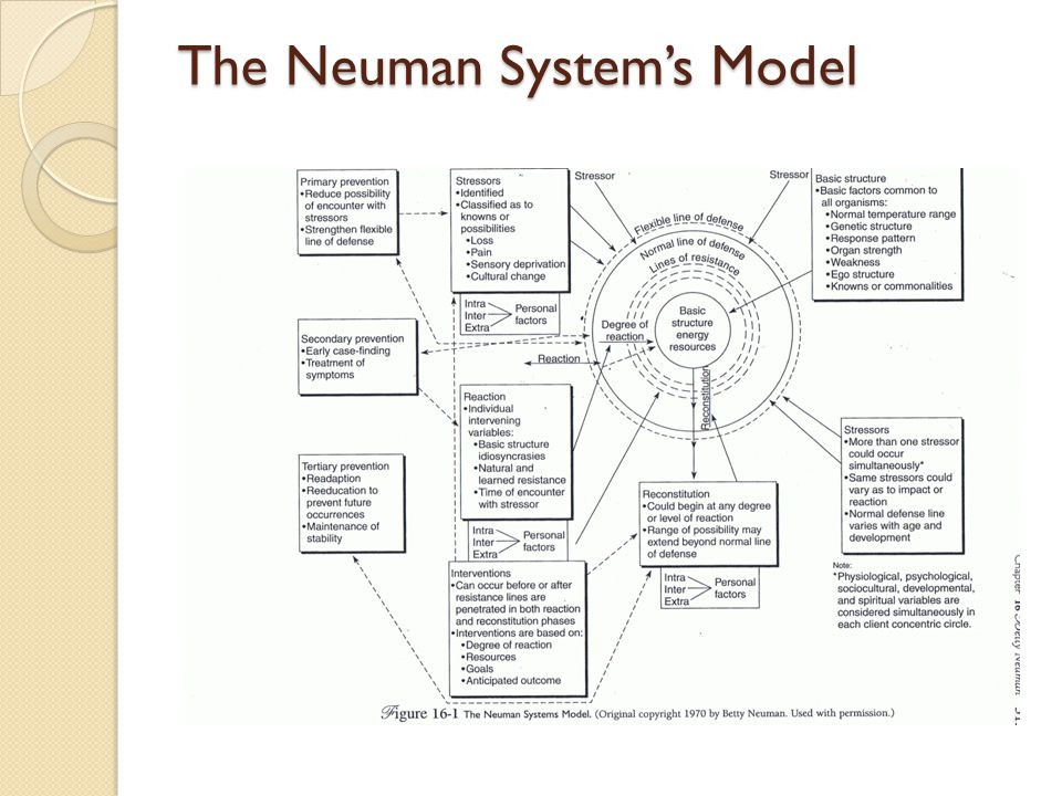 the neuman systems model in research and practice