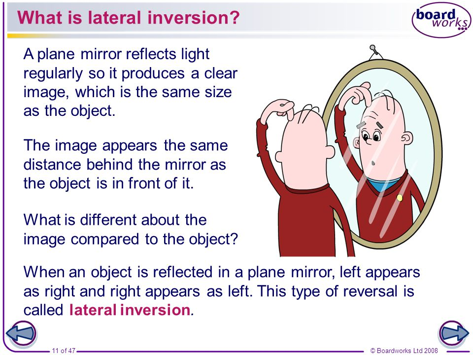 What is lateral inversion