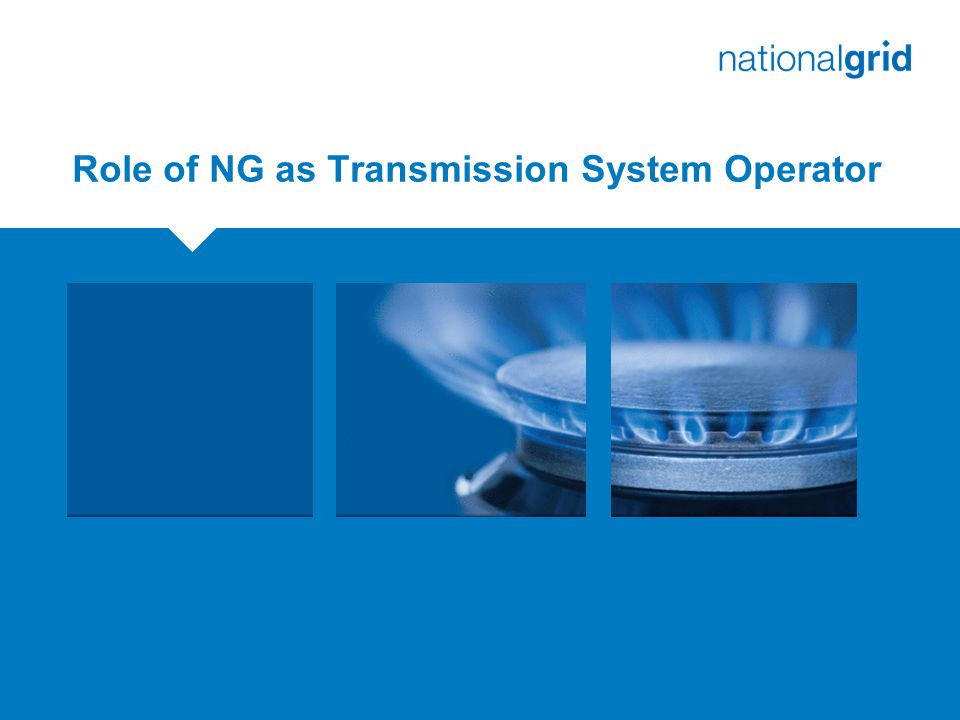 Role of NG as Transmission System Operator