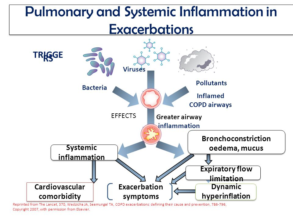 COPD Chronic Obstructive Pulmonary Disease - ppt download