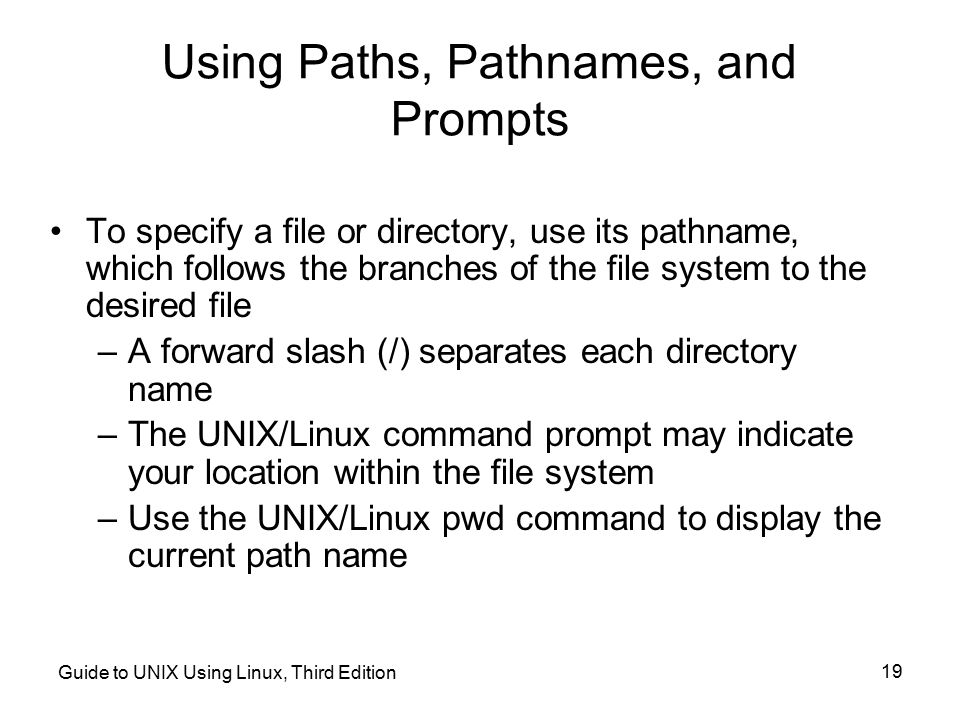 Using Paths, Pathnames, and Prompts