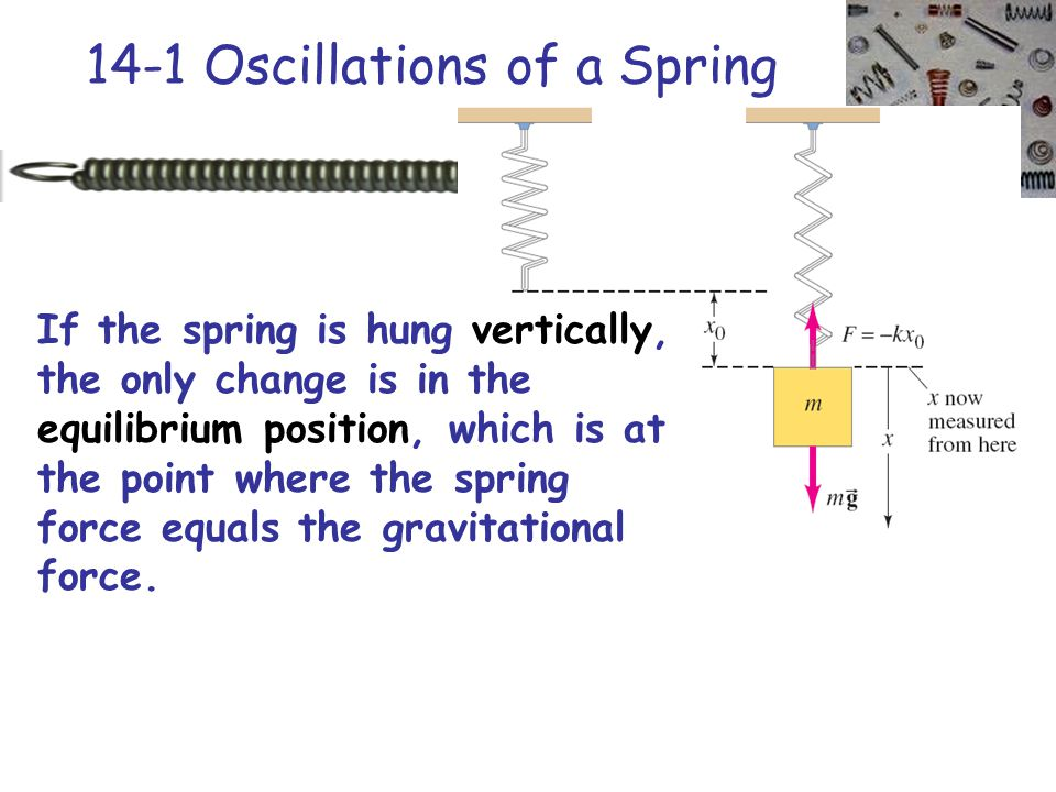 14-1 Oscillations of a Spring