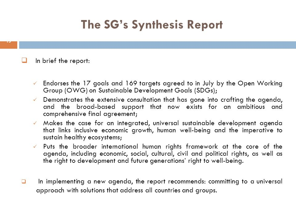 The SG's Synthesis Report