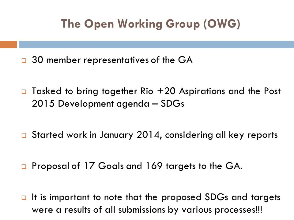 The Open Working Group (OWG)