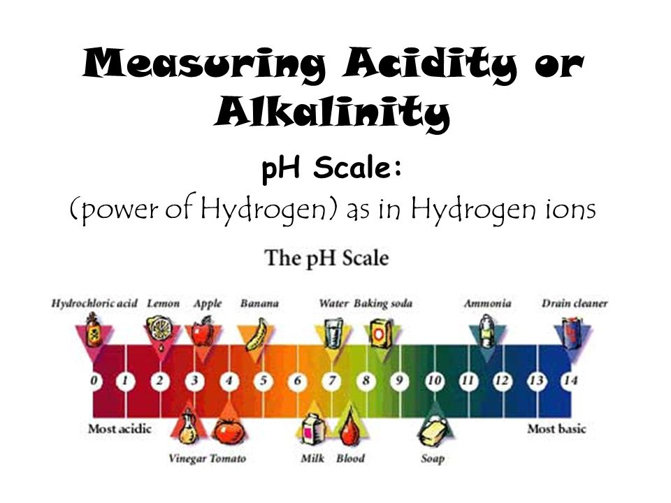 Measuring Acidity or Alkalinity