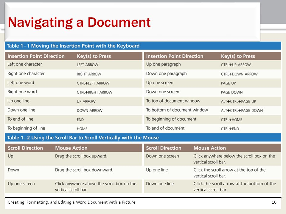 Navigating a Document Creating, Formatting, and Editing a Word Document with a Picture