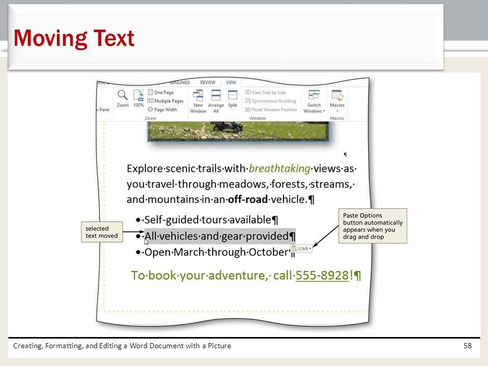 Moving Text Creating, Formatting, and Editing a Word Document with a Picture