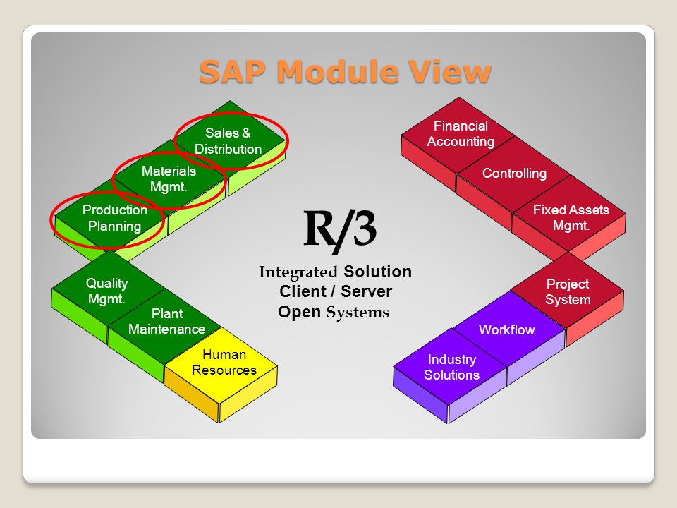 R/3 SAP Module View Integrated Solution Client / Server Open Systems