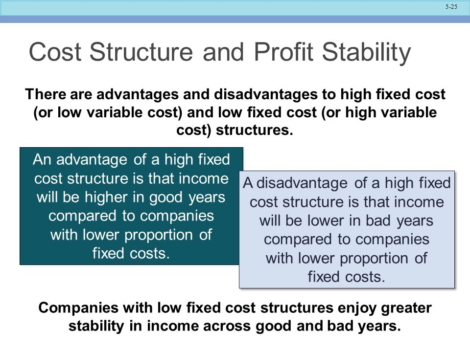 Cost Structure and Profit Stability