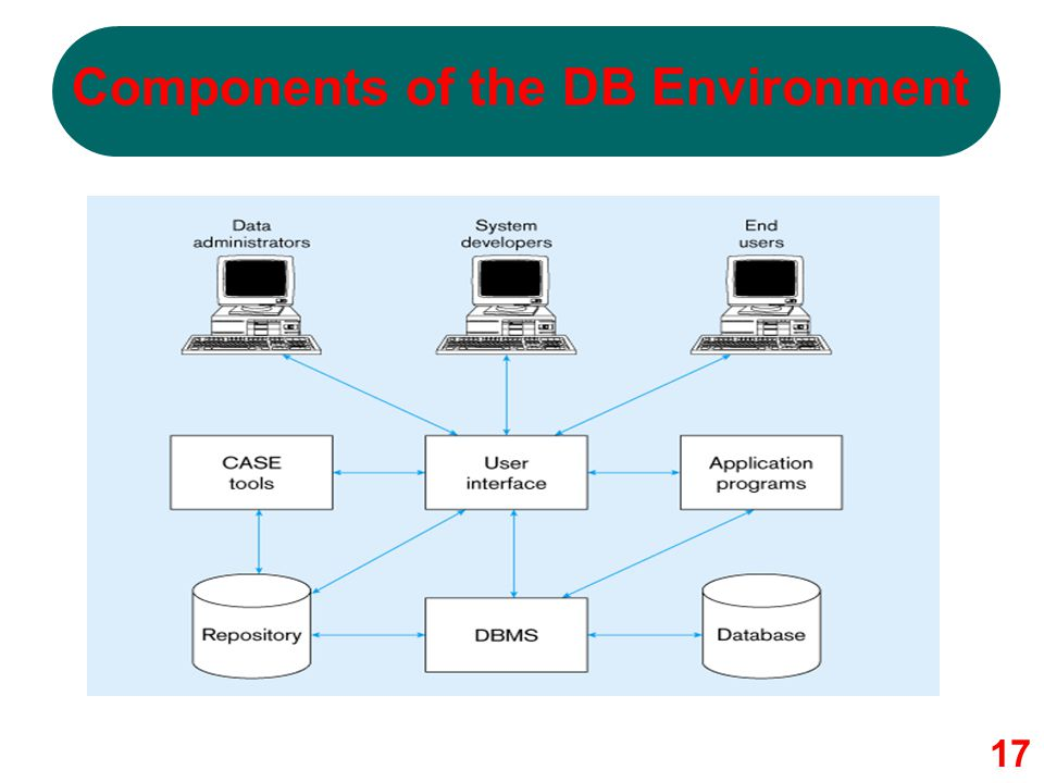 Components of the DB Environment