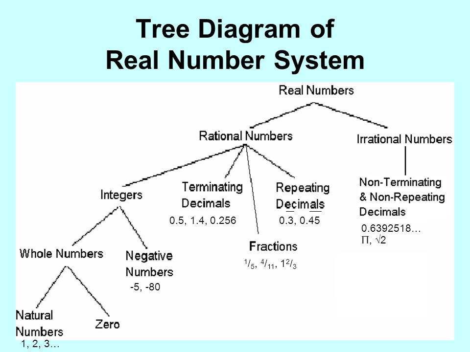 Tree Diagram of Real Number System
