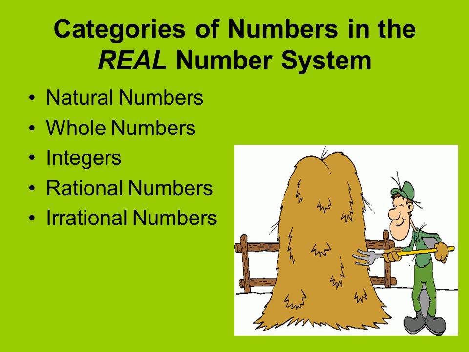 Categories of Numbers in the REAL Number System
